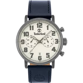 TIMBERLAND RICHDALE WATCH - TBL.15405JSQS/04