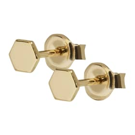 CLUSE ESSENTIELLE EARRINGS - CLUCLJ51006